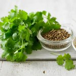 Useful properties of coriander